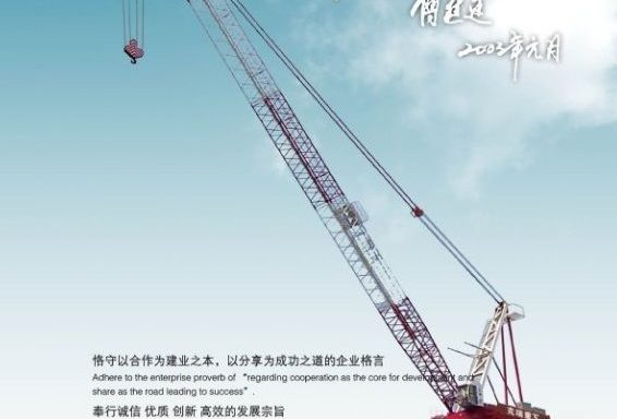 Luffing Tower Crane D 300